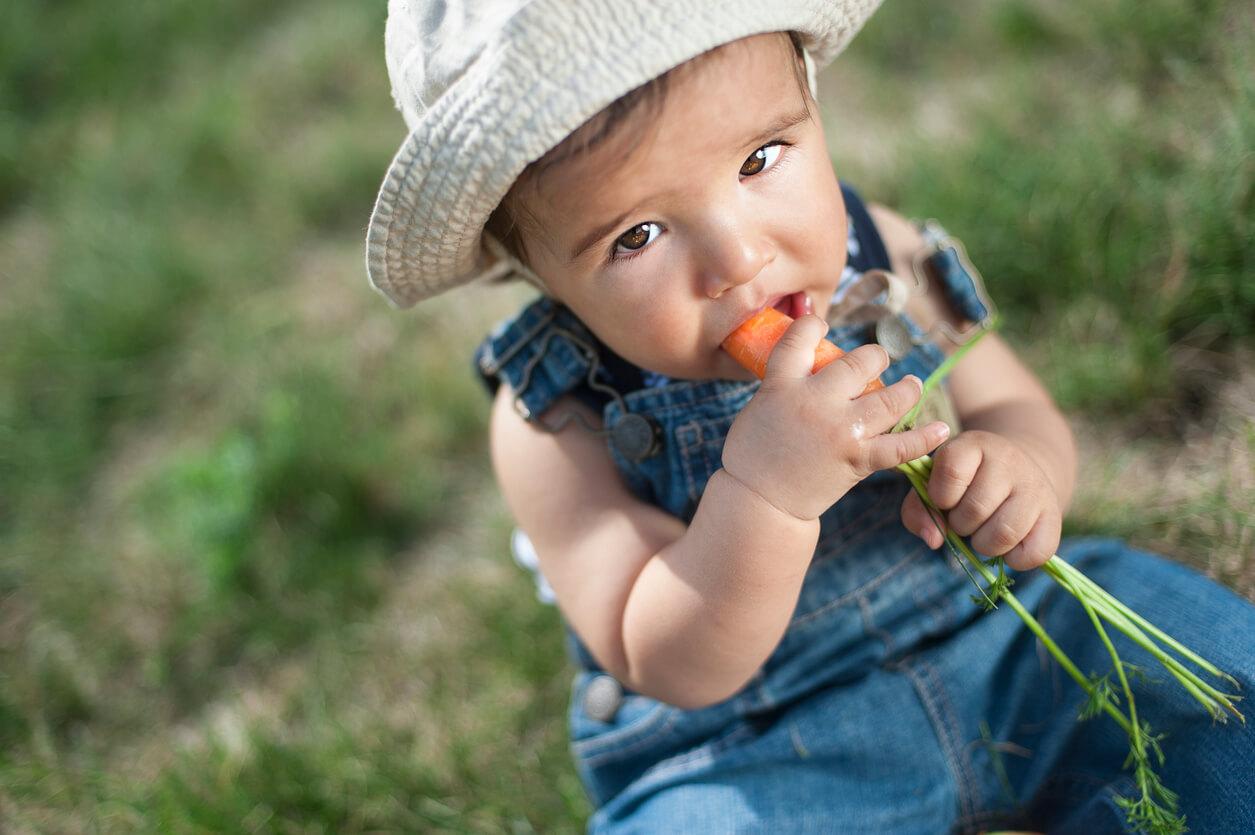 bebeklerde diş çıkarma belirtileri, bebeklerde diş çıkarma, bebeklerde diş çıkarma dönemi, bebeklerde diş çıkarma tablosu, bebeklerde diş çıkarma süreci, bebeklerde diş çıkarma sıralaması, bebeklerde diş çıkarma zamanları, bebeklerde diş çıkarma zamanı, bebeklerde diş çıkarma sırası resimli, bebeklerde diş çıkarmaya ne iyi gelir